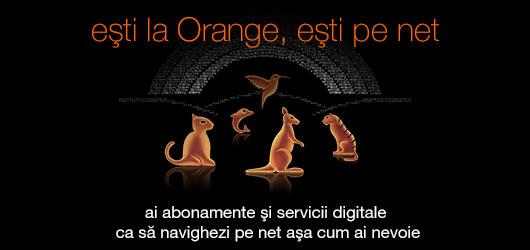 bonus reincarcare orange